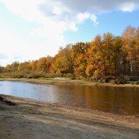 Тихо осень плывет по реке :: Galina Solovova