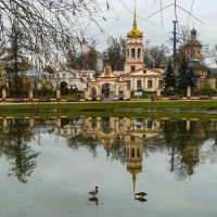 Москва. Усадьба Алтуфьево. :: Ирина