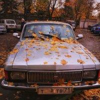 Осенний листопад.. :: Алексей Архипов