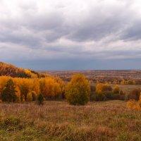 Будет дождь :: Андрей Зайцев