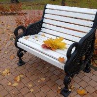 Листок кружился... на скамью устало присела осень... царственно строга... :: Люба