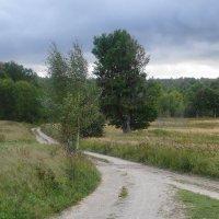 Виштынецкий природный парк :: Маргарита Батырева