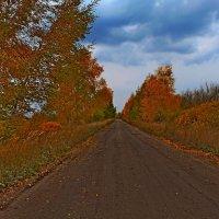 Дорога в Осень :: Татьяна Са