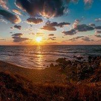 На закате дня :: Виктор Мороз