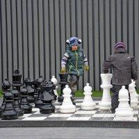 Шахматисты :: Наталия П