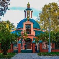 Москва. Воронцовский парк. :: Ирина