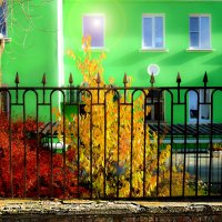 Осень в городе :: Ирина АЛЕКСАндрович
