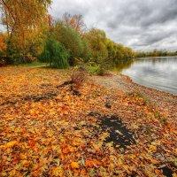 Цветными листьями октябрь пишет ноты :: Наталья Лакомова