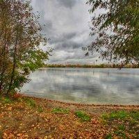 Пусть пасмурный октябрь осенней дышит стужей :: Наталья Лакомова