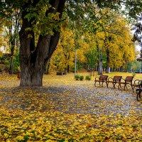 Осень. г.Псков :: Виктор Желенговский