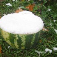 Первый снег :: Maikl Smit