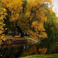 """Осеннее """"золото"""". :: barsuk lesnoi"""