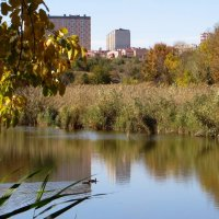 Удивительный уголок природы – Мухина балка, расположенная в черте города Аксая :: Татьяна Смоляниченко