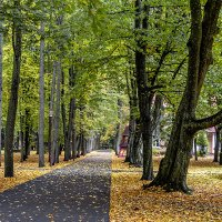 Осень в парке. :: Владимир Ф