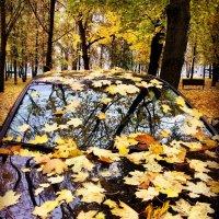 Осенний узор ... :: Лариса Корж-ая