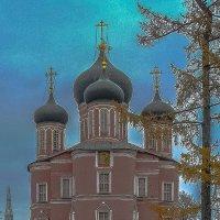 Москва. Донской монастырь. :: Ирина