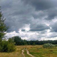 мрачная погода... :: Александр Прокудин