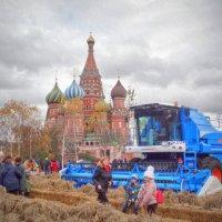 Золотая осень в Москве :: anderson2706