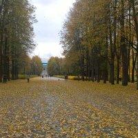 В парке :: Митя Дмитрий Митя