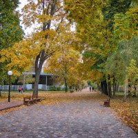 Осень. Парк. :: Анатолий Михайлович