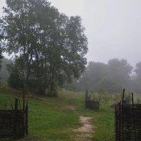 Утро туманное... :: Петр Заровнев