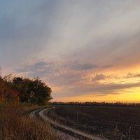 Над полем медленно и сонно заката гаснет полоса :: Валерий Ткаченко
