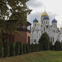 Туи в монастыре. :: Александр Сергеевич Антонов