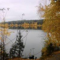 Осень :: Владимир Звягин