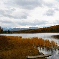 Горное озеро. :: Валерий Медведев