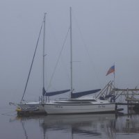 Леди в тумане. :: Павел