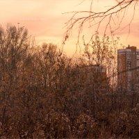 Сиреневый закат :: Олег Карташов