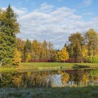 Вот она какая, Осень! :: Александр Петров