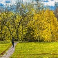 Осень в Коломенском :: Игорь Герман