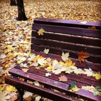 На скамейке ... :: Лариса Корж