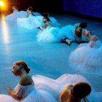 Звёзды балета :: Майя Жинка