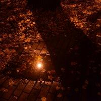 ночная осень :: Галина R...
