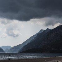 Перед штормом.. :: Ирина Малышева