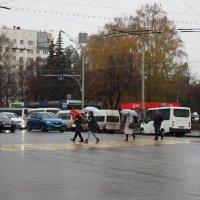 Зонтики. :: Ильсияр Шакирова