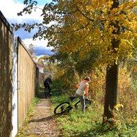 Вокруг Введенского озера на велосипедах. :: Татьяна Помогалова