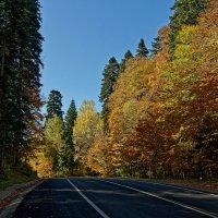 Осень в горах :: Дмитрий Емельянов