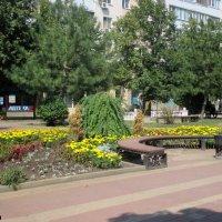 На Пушкинской улице :: Нина Бутко