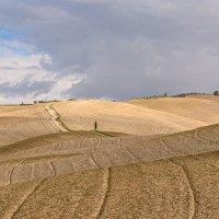 Осень Тосканы :: Konstantin Rohn