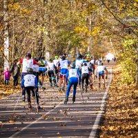 Осенний марафон :: Антон К.