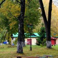 Яркая осень :: Любовь