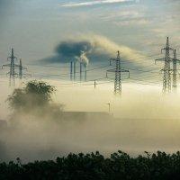 Туман :: Виталий Павлов