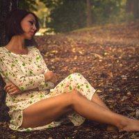 Тишина  осеннего леса.. :: Елена