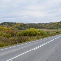 осенние дороги 2 :: nataly-teplyakov