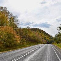 осенние дороги 4 :: nataly-teplyakov