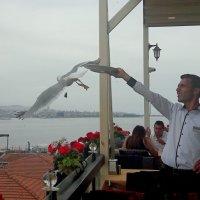 Официант ресторана развлекает посетителей.. :: Зинаида Каширина