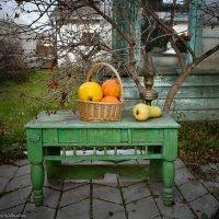 Осенние мотивы! :: Ирина Антоновна